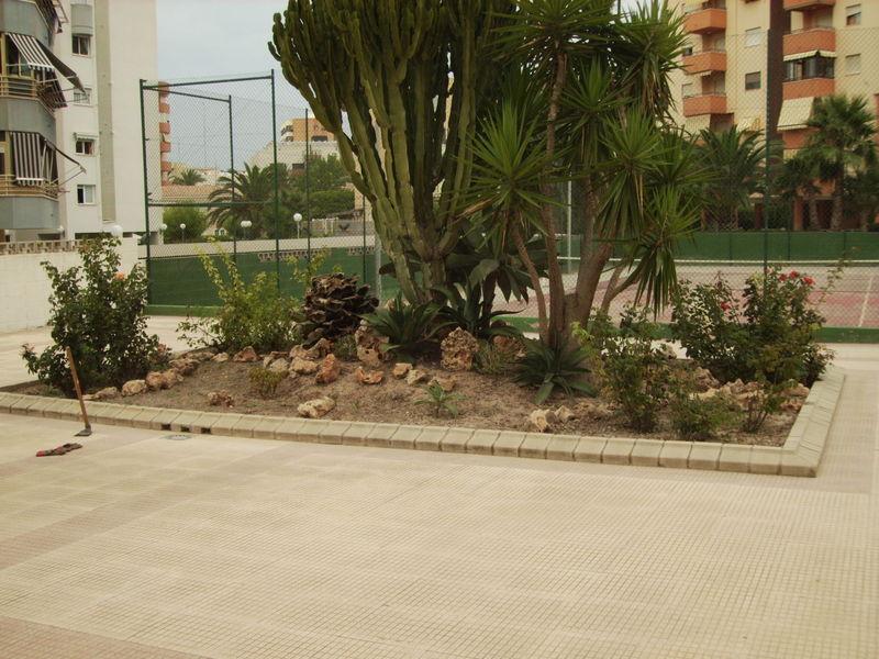 Paisajismo y dise o de jardines en alicante - Paisajismo jardines pequenos ...