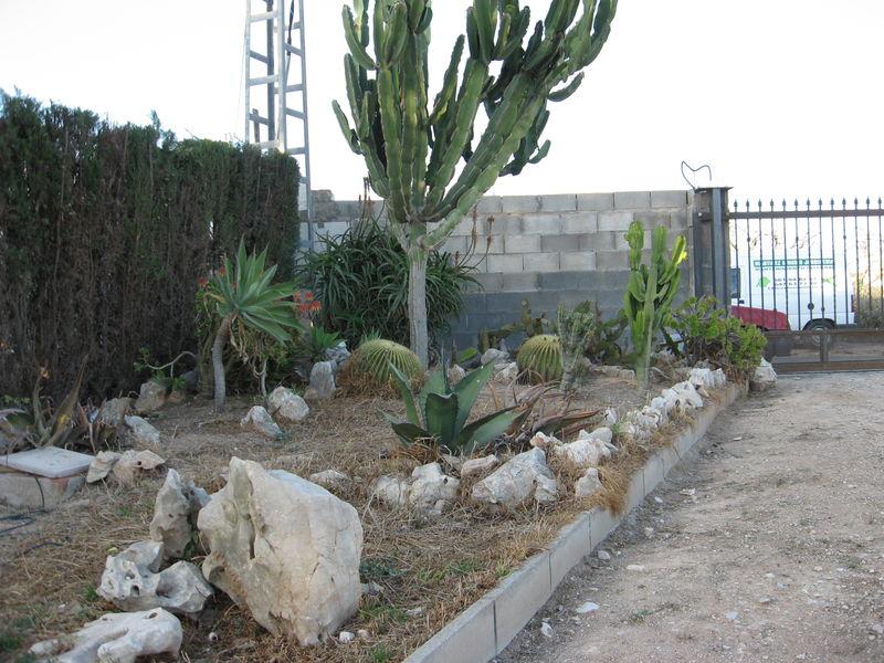 Paisajismo y dise o de jardines en alicante for Diseno de jardines lima