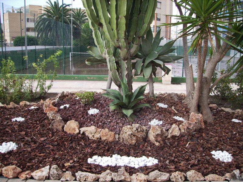 Paisajismo y dise o de jardines en alicante - Paisajismo jardines exteriores ...
