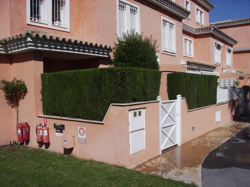 Poda Y Recorte De Arbustos En Alicante